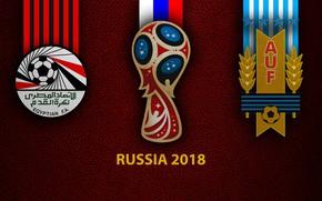Картинка wallpaper, sport, logo, football, FIFA World Cup, Russia 2018, Egypt vs Uruguay