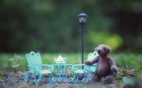 Картинка трава, природа, детство, фон, игрушка, кресло, чайник, медведь, мишка, чаепитие, фонарь, медвежонок, ожидание, плюшевый, свидание, …