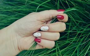 Картинка трава, рука, ногти, маникюр