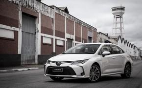 Картинка фото, Toyota, Автомобиль, Hybrid, Sedan, Corolla, Latam, Altis, 2019