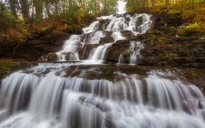 Картинка осень, лес, камни, растительность, водопад, поток, каскад
