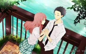 Картинка романтика, пара, Аниме, двое, 2016, Koe no Katachi, A Silent Voice, Форма Голоса