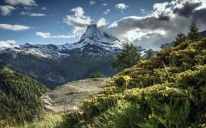 Картинка вершина, Маттерхорн, Пеннинские Альпы, Schweiz, Валле-д'Аоста, Beautiful evening