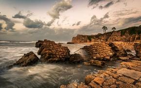 Картинка море, небо, облака, камни, пальмы, скалы, побережье, горизонт, прибой, Израиль, Haifa, утёсы