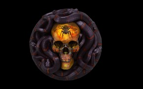 Обои рендеринг, череп, змея, арт, Grigory Lebidko, 12 Sins: Envy