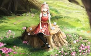Картинка девушка, цветы, природа, совята