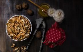 Картинка орехи, мёд, изюм