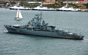 Картинка корабль, севастополь, сторожевой, пытливый