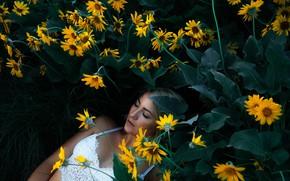 Картинка девушка, цветы, желтые, лежит