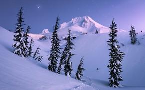 Картинка winter, mountain, snow