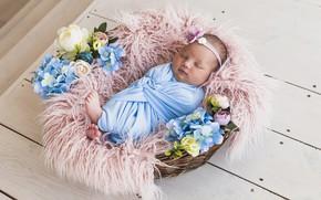 Картинка цветы, корзина, малыш, спит, младенец