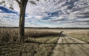 Картинка Illinois, Road, Logan County
