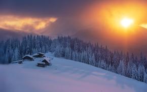 Картинка зима, лес, солнце, снег, закат, горы, домики, Карпаты, Misha Reme