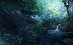 Картинка лес, вода, пейзаж, природа