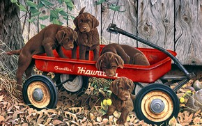 Картинка осень, собаки, листья, природа, поза, дерево, рисунок, доски, забор, картина, сад, щенки, арт, тачка, двор, …