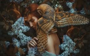 Картинка девушка, сова, рыжие волосы, сирень, Marketa Novak