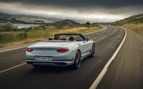Картинка Bentley, сзади, кабриолет, 2019, Continental GT V8 Convertible