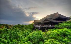 Картинка крыша, зелень, лес, утро, Япония, Киото
