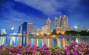 Картинка вода, цветы, город, здания, освещение, Таиланд, Тайланд, Бангкок