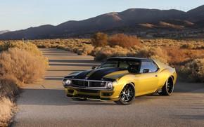 Картинка Дорога, Колеса, Капот, Кусты, Диски, Muscle car, 1972, Classic car, Sports car, AMC, AMC Javelin, …
