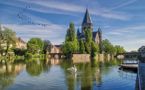 Картинка пейзаж, озеро, лебеди