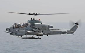 Картинка Вертолет, US Marine Corps, AH-1W Super Cobra