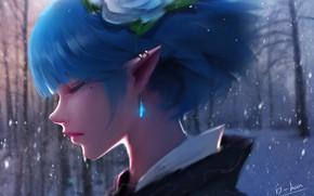 Картинка лес, девушка, снег, эльф