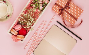 Картинка подарок, печенье, блокнот, десерт