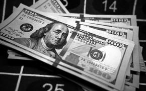 Картинка макро, деньги, доллары