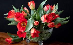 Картинка букет, тюльпаны, ваза