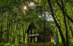 Картинка фото, Природа, Забор, Деревья, Австрия, Дом, Carinthia, Лучи света
