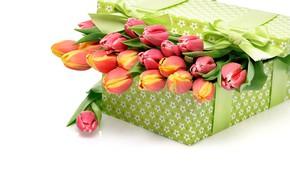 Обои коробка, подарок, букет, тюльпаны, бантик