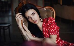 Обои платье, кресло, тату, горошек, Дмитрий Архар, девушка, брюнетка, лицо, Dmitry Arhar, пирсинг, взгляд