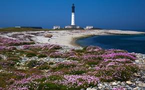 Картинка море, пляж, лето, небо, цветы, галька, синева, камни, голубое, берег, побережье, Франция, маяк, здания, домики, …