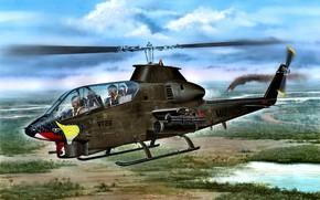 Картинка USA, US Navy, AH-1G, Attack Helicopter-1 Gunship, Huey Cobra, Многоцелевой ударный вертолёт