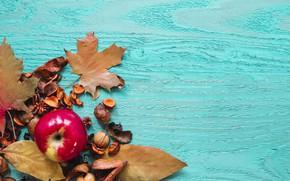 Картинка осень, листья, фон, дерево, яблоко, colorful, фрукты, wood, background, autumn, leaves, сухофрукты, maple