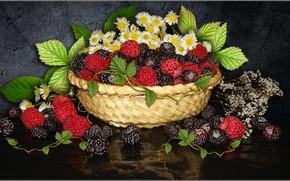 Картинка цветы, малина, ромашки, ягода, натюрморт, ежевика, обои на рабочий стол, фото Елена Аникина