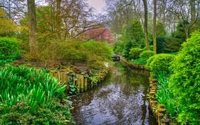 Картинка зелень, деревья, пруд, парк, Нидерланды, мостик, кусты, Keukenhof, Lisse