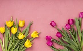 Картинка цветы, тюльпаны, розовые, yellow, pink, flowers, tulips