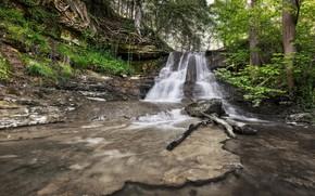 Картинка лес, пейзаж, природа, водопад