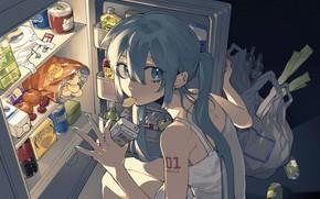 Картинка девушка, еда, холодильник, Hatsune Miku, Vocaloid, ночной перекус