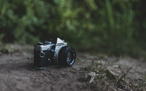 Картинка трава, ретро, камера, olympus, фотоаппапрт, олимпус