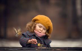 Картинка фон, зерно, девочка, птички, берет, боке, Марианна Смолина