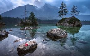 Картинка лес, вода, отражения, деревья, горы, лист, озеро, камни, елки, ели