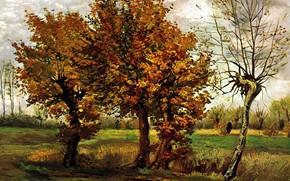 Картинка Винсент ван Гог, Nuenen, Autumn Landscape with Four Trees