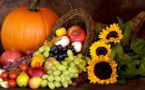 Картинка подсолнухи, виноград, тыква, фрукты, натюрморт, овощи, много, гранаты, ассорти