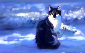 Картинка зима, кошка, снег, сидит, by Meorow