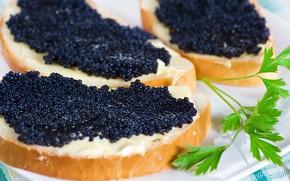 Обои макро, бутерброд, черная икра