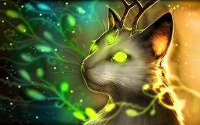 Картинка рога, horns, fantasy art, светящиеся глаза, glowing eyes, fantastic creature, фэнтези арт, волшебный кот, magic …