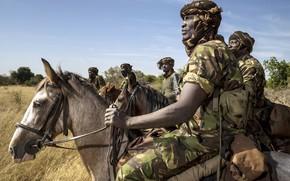 Картинка оружие, кони, армия, солдаты